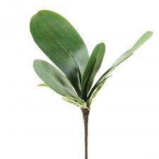 "9.5""ORCHID LEAF X4 GREEN"