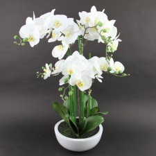 "26""SOFT TOUCH ORCHID W/POT"