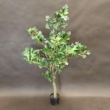 4' OAK TREE X333LVS POTTED