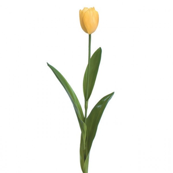 Tulip silk flower stem of the day shinoda design center tulips at shinoda design center mightylinksfo