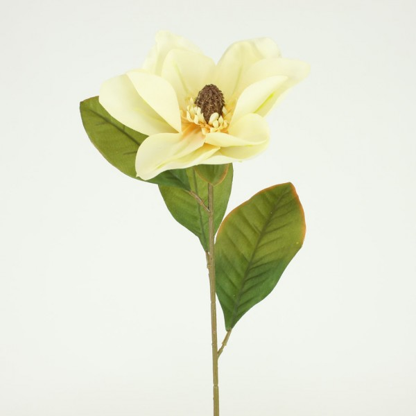 Magnolia silk flower stem of the day shinoda design center magnolias at shinoda design center mightylinksfo