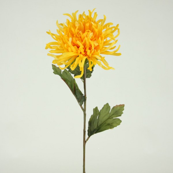 Chrysanthemum silk flower stem of the day shinoda design center spider mums at shinoda design center mightylinksfo