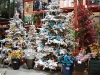 santa_ana_christmas_trees_2010_1