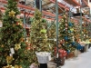 santa_ana_christmas_trees_2010_5