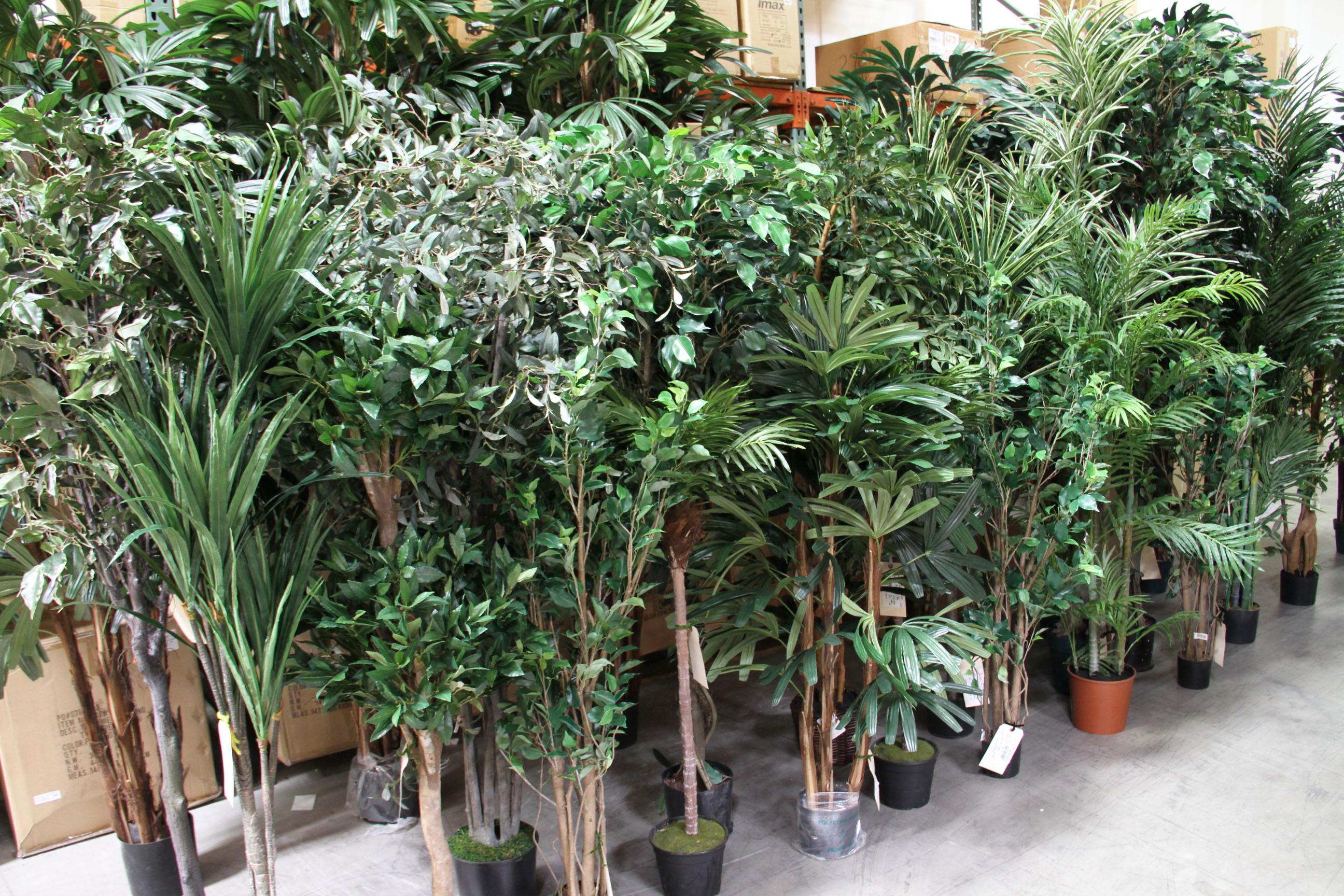 silk trees at shinoda design center - Silk Trees